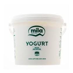 YOGURT 5kg NATURALE MILA